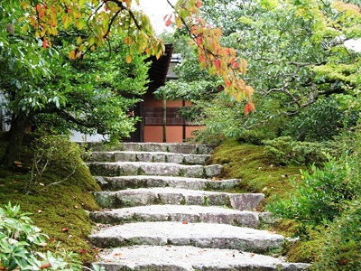 Outdoor stairsteps