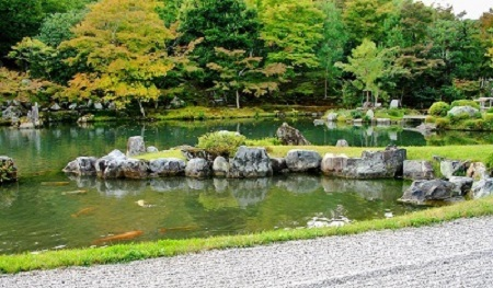 Pond with grass and rocks