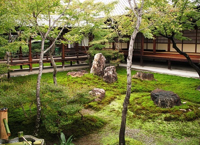 Courtyard with rocks and trees