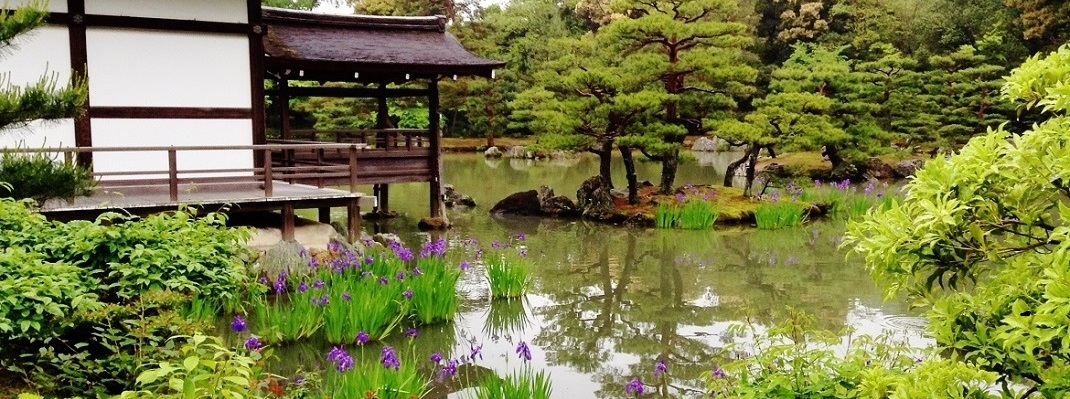 Pond with Japanese dock and flowers