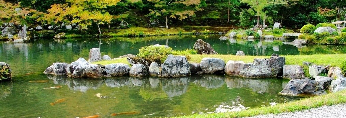 Pond with rocks and a peninsula with green grass